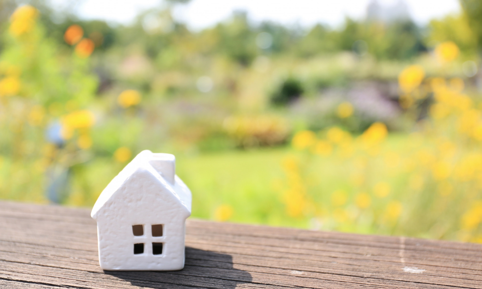 家、自然豊か