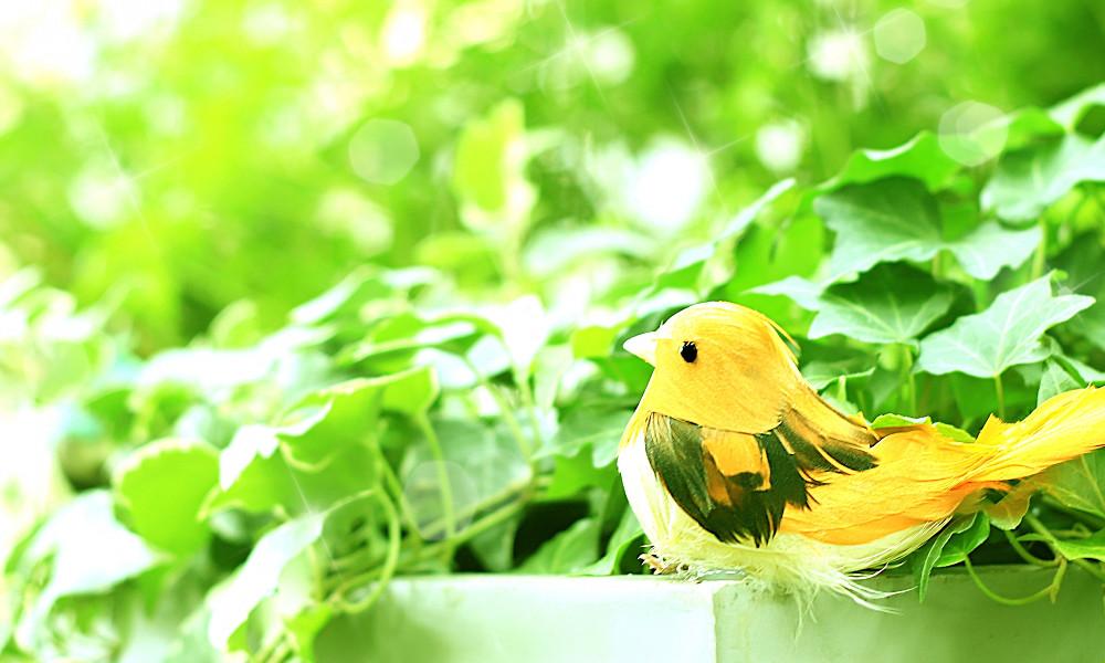 鳥のオブジェ